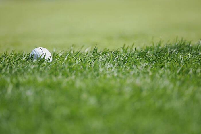 Фото рафа на гольф-поле